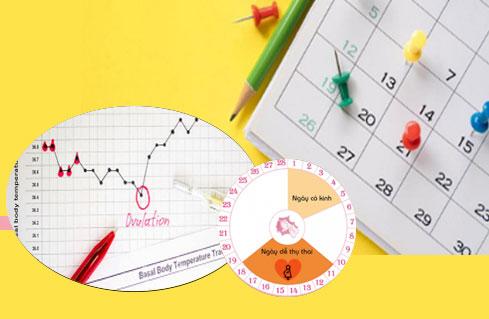 nhiều chị em tò mò muốn biết cách tính ngày rụng trứng chính xác nhất để kế hoạch hoá gia đình đúng với ý muốn của bản thân. Chúng tôi xin cung cấp một vài thông tin hữu ích cho các chị em qua link dẫn kèm theo hình dưới đây